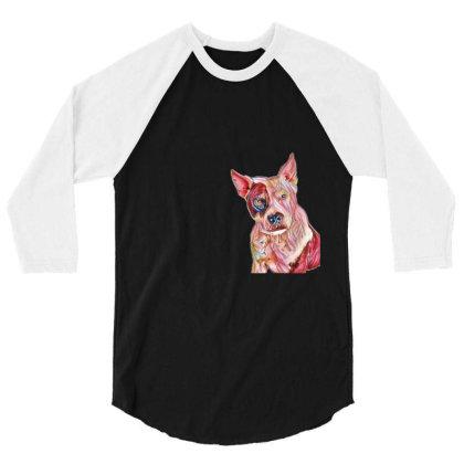 Pit Bull Guard Dog Sitting In 3/4 Sleeve Shirt Designed By Kemnabi