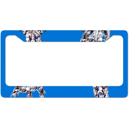 Large Tan And White Dog Sitti License Plate Frame Designed By Kemnabi