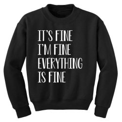 its fine im fine everything is fine Youth Sweatshirt | Artistshot