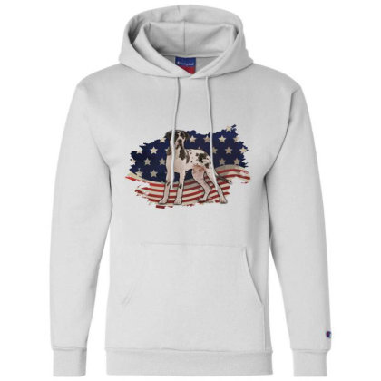 Pointer American Flag Usa Patriotic  4th Of July Gift Champion Hoodie Designed By Vip.pro123