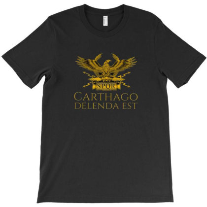 Ancient T-shirt Designed By Disgus_thing