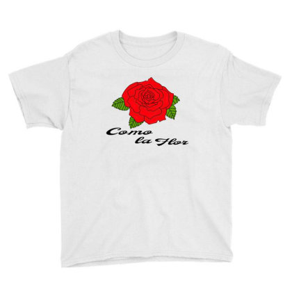 Mexican Spanish Womans Bday Cumbia Queen Reina Youth Tee Designed By Alparslan Acar