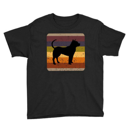 Youth 80s Retro Pit Bull Youth Tee Designed By Ashlıcar