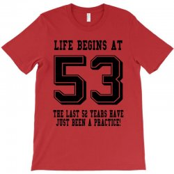 53rd birthday life begins at 53 T-Shirt | Artistshot