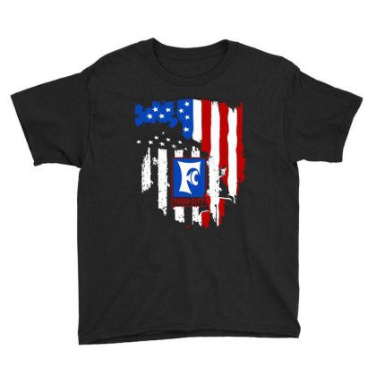 Food City American Flag Independence Day Youth Tee Designed By Jasmine Tees