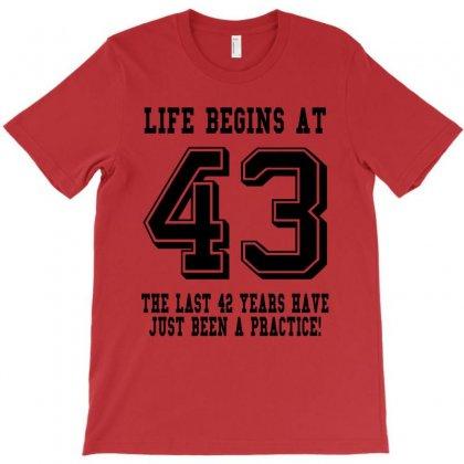 43rd Birthday Life Begins At 43 T-shirt Designed By Teresabrador