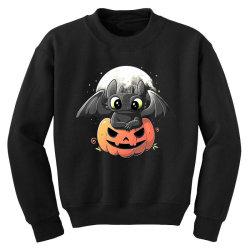 baby dragon pumpkin Youth Sweatshirt | Artistshot