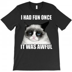 grumpy cat i had fun once it was awful T-Shirt | Artistshot