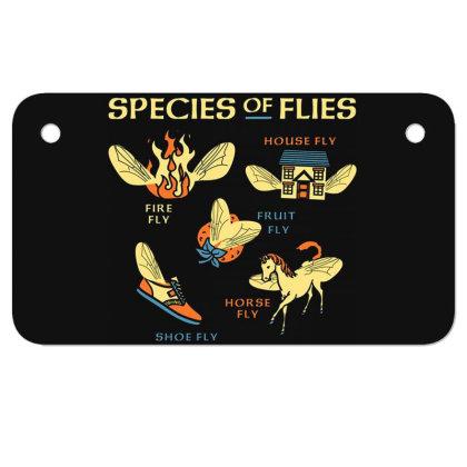 Species Of Flies Motorcycle License Plate Designed By Owen