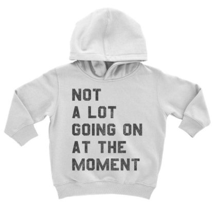 Not A Lot Going On At The Moment  T Shirt Toddler Hoodie Designed By Tegan8688