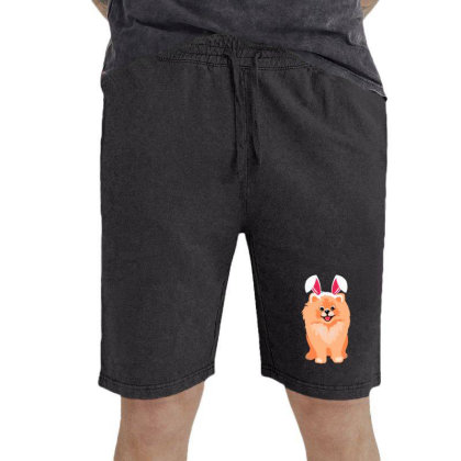 Cute Pomeranian Vintage Short Designed By Romeo And Juliet