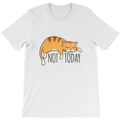 Not Today Crazy Cat T-shirt Designed By Harold