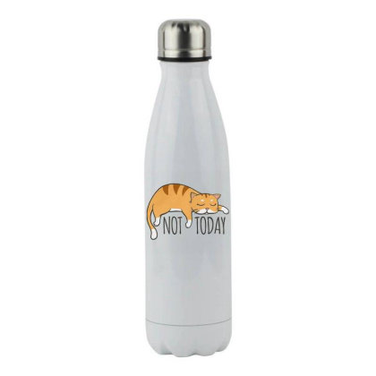 Not Today Crazy Cat Stainless Steel Water Bottle Designed By Hofmantrs